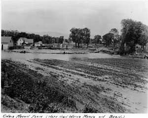 Corrected Chris Mason Farm 1904 flood FCMOD H06526
